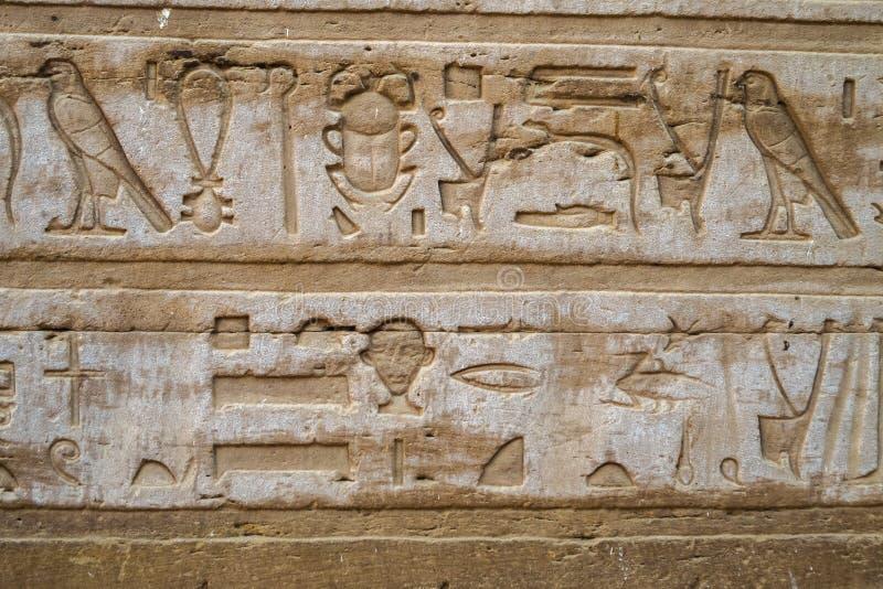 Ciérrese para arriba de jeroglíficos con un escarabajo foto de archivo