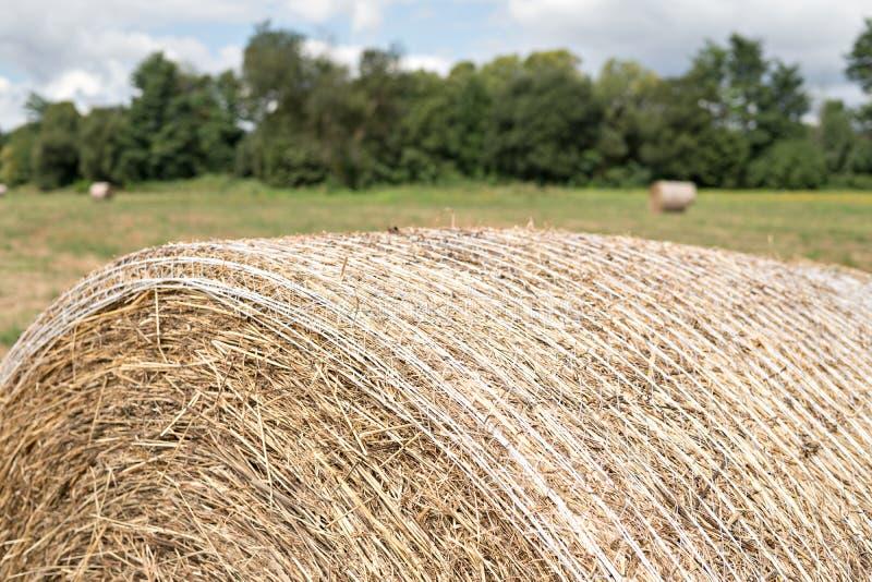 Ciérrese para arriba de la bala grande de heno cosechada en un campo imagenes de archivo
