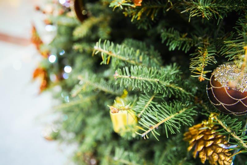 Ciérrese para arriba de la chuchería brillante hermosa, de la caja de regalo de oro y pequeño del pino colgando en el árbol de na imágenes de archivo libres de regalías