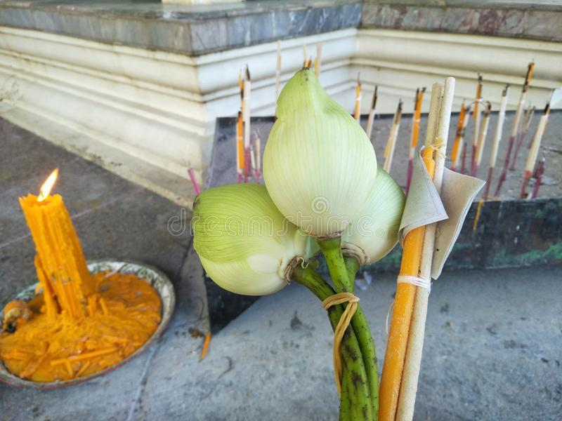 Ciérrese para arriba de la flor de loto con el palillo y las velas del incienso imágenes de archivo libres de regalías