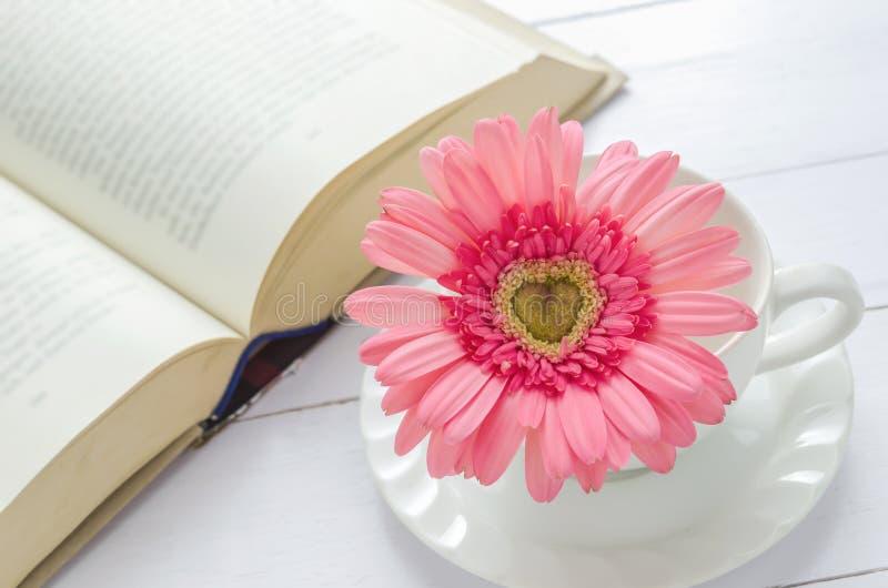 Ciérrese para arriba de la flor rosada del Gerbera en la taza blanca imagenes de archivo
