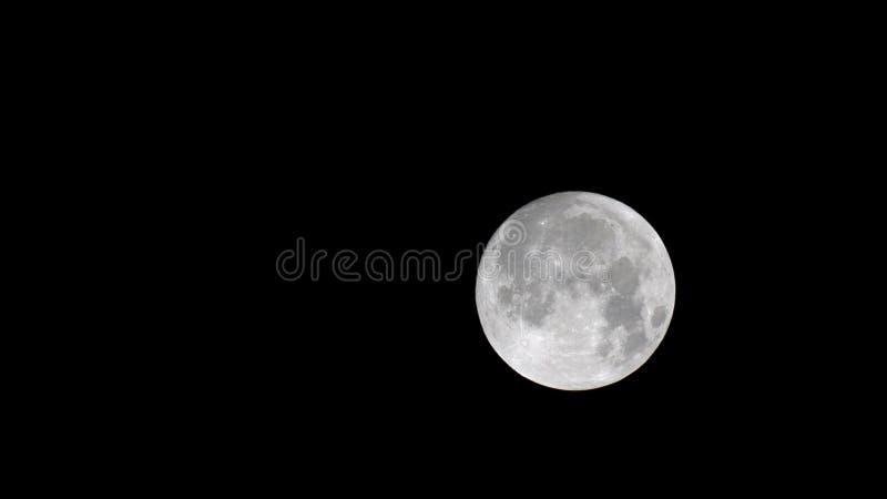 Ciérrese para arriba de la luna foto de archivo libre de regalías