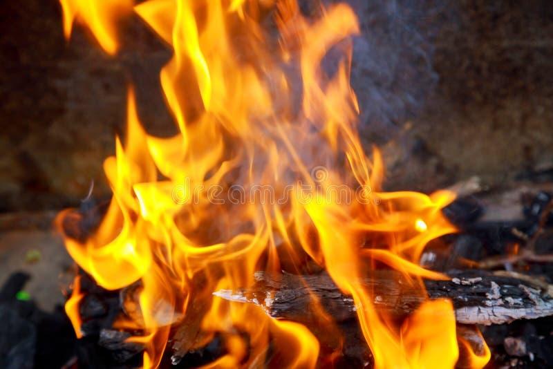 Ciérrese para arriba de las llamas del fuego del campo y del fuego imagenes de archivo