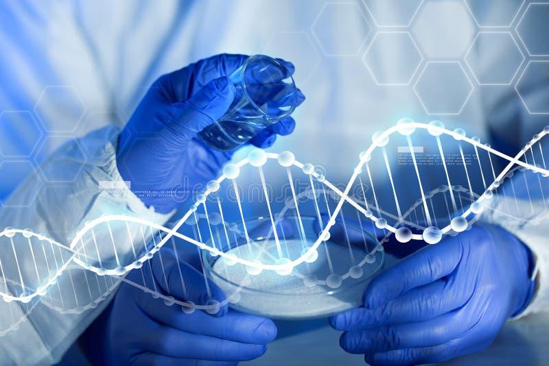 Ciérrese para arriba de las manos de los científicos con las sustancias químicas en laboratorio stock de ilustración