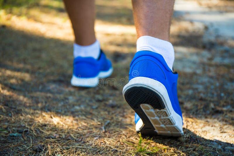 Ciérrese para arriba de las piernas masculinas que corren en bosque imágenes de archivo libres de regalías