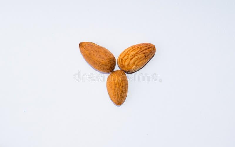 Ciérrese para arriba de las semillas marrones de las almendras aisladas en el fondo blanco fotografía de archivo