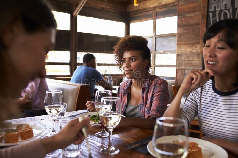 Ciérrese para arriba de los amigos femeninos que disfrutan del almuerzo en un restaurante fotos de archivo
