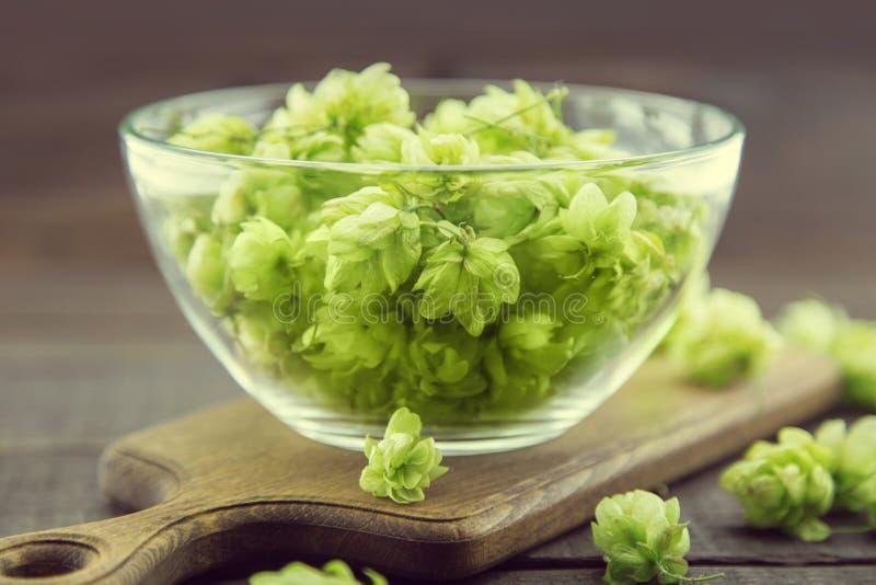Ciérrese para arriba de los conos de salto maduros verdes en un bol de vidrio sobre fondo de madera rústico oscuro Ingrediente de fotos de archivo libres de regalías