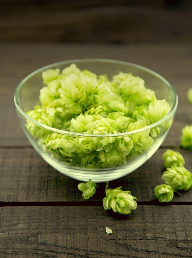 Ciérrese para arriba de los conos de salto maduros verdes en un bol de vidrio sobre rusti oscuro imagen de archivo
