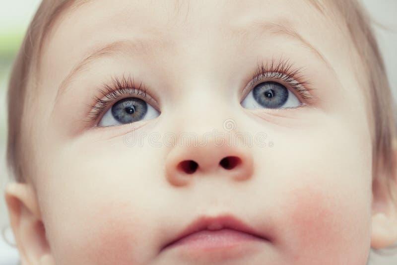 Ciérrese para arriba de los ojos azules jovenes del ` s del niño que miran para arriba - el fondo del concepto de la atención san imágenes de archivo libres de regalías