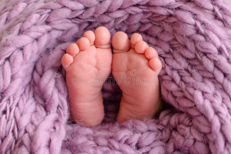 Ciérrese para arriba de los pies recién nacidos del bebé cubiertos con la manta imagen de archivo libre de regalías