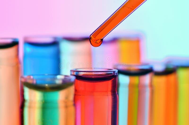 Ciérrese para arriba de los tubos de ensayo y de la pipeta de la química imagen de archivo