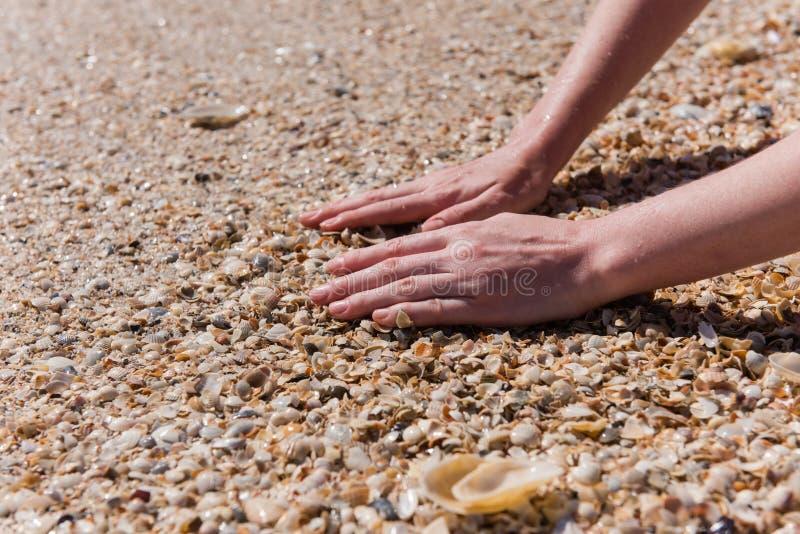 Ciérrese para arriba de manos femeninas en la playa de los crustáceos fotografía de archivo libre de regalías