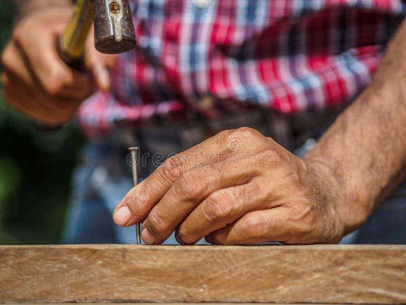 Ciérrese para arriba de martillar un clavo en el tablero de madera profesión, carpa foto de archivo