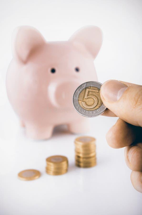 Ciérrese para arriba de moneda del pulimento de la tenencia de la mano fotografía de archivo libre de regalías