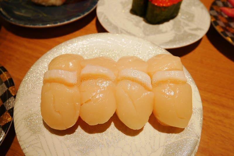 Ciérrese para arriba de nigiri del sushi del hotate de la concha de peregrino en la placa en restaurante japonés de la correa del imágenes de archivo libres de regalías