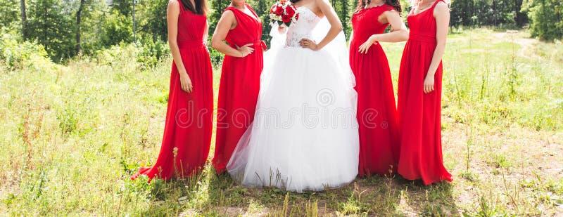 Ciérrese para arriba de novia y de damas de honor fotografía de archivo libre de regalías