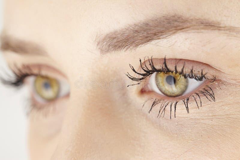 ci rrese para arriba de ojos verdes amarillos de la mujer atractiva foto de archivo imagen. Black Bedroom Furniture Sets. Home Design Ideas