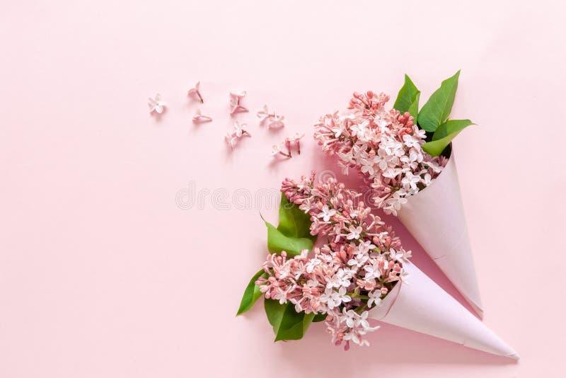 Ciérrese para arriba de ramo de lila fragante fresca en los conos de papel en fondo rosado imágenes de archivo libres de regalías