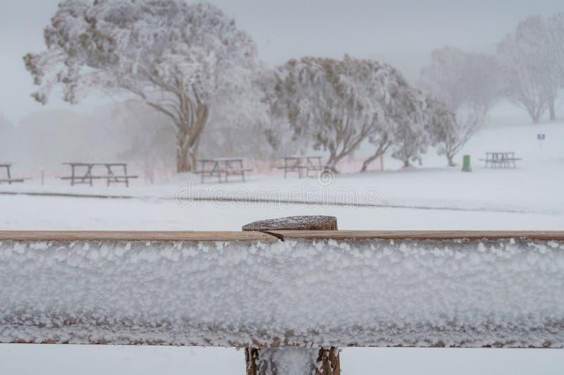 Ciérrese para arriba de tablón helado con las mesas de picnic y los árboles en nieve en el fondo fotos de archivo libres de regalías