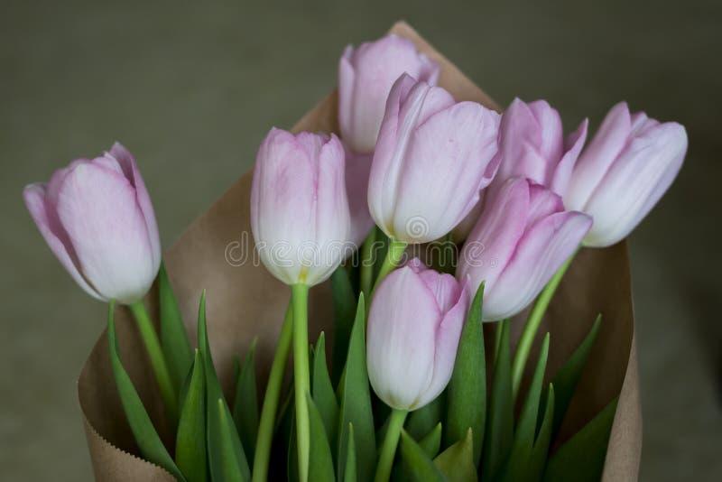 Ciérrese para arriba de tulipanes rosados en papel marrón foto de archivo