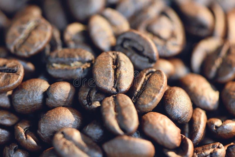 Ciérrese para arriba de un grano de café en fondo y luz del sol de la textura por mañana imágenes de archivo libres de regalías