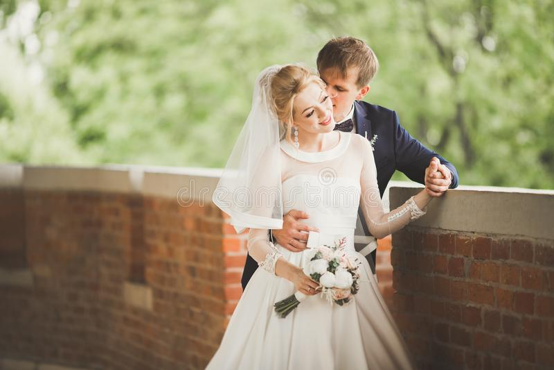 Ciérrese para arriba de un par joven agradable de la boda fotografía de archivo