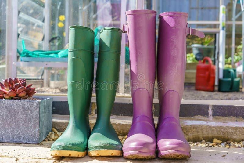 Ciérrese para arriba de un par de Wellington Boots púrpura y verde imagen de archivo libre de regalías
