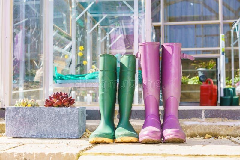 Ciérrese para arriba de un par de Wellington Boots púrpura y verde fotografía de archivo