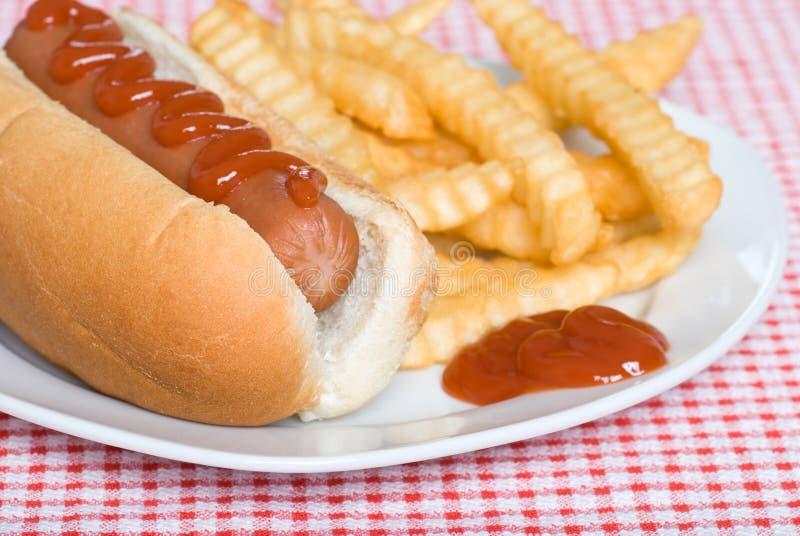 Ciérrese para arriba de un perrito caliente y de patatas fritas con la salsa de tomate foto de archivo