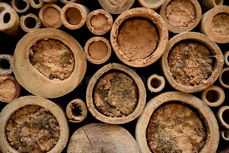 Ciérrese para arriba de una casa o un hotel de Honey Bee, hecho de bambú y suciedad o fango fotos de archivo libres de regalías