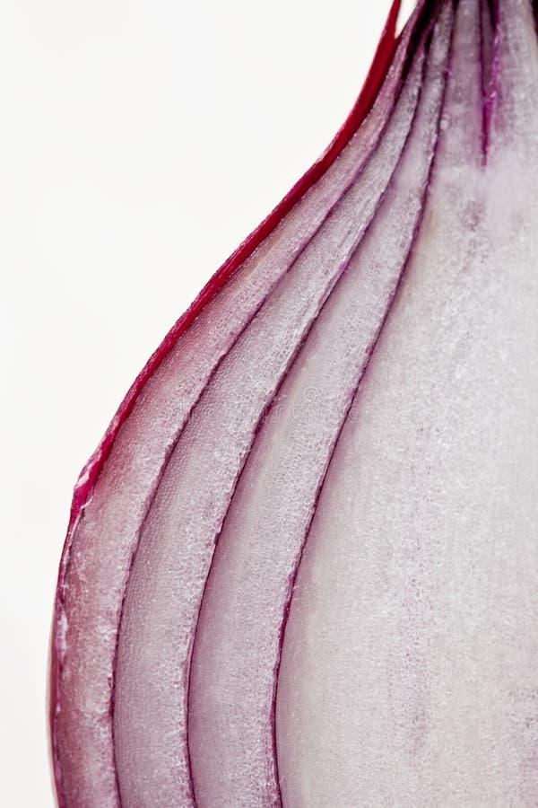Ciérrese para arriba de una rebanada de cebolla roja foto de archivo libre de regalías