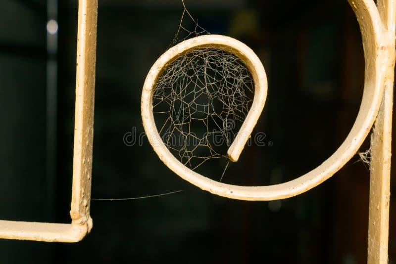 Ciérrese para arriba de una web de araña en una ventana imagenes de archivo