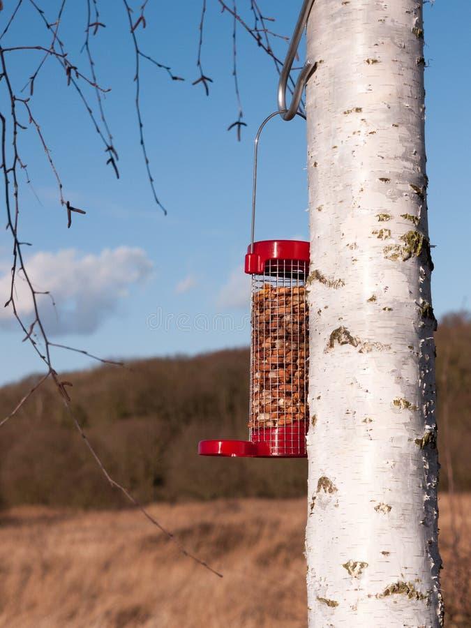 ciérrese para arriba del alimentador rojo del pájaro llenado de los cacahuetes imagenes de archivo