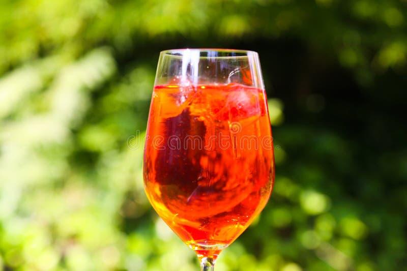 Ciérrese para arriba del cóctel anaranjado rojo en copa de vino con los cubos de hielo contra fondo de las plantas verdes imagen de archivo libre de regalías