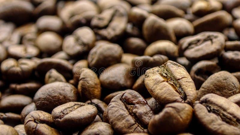 Ciérrese para arriba del café de los granos fotos de archivo