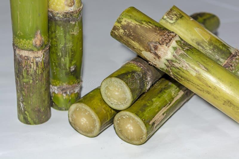 Ciérrese para arriba del fondo de Sugar Cane Pieces Isolated On White fotos de archivo libres de regalías