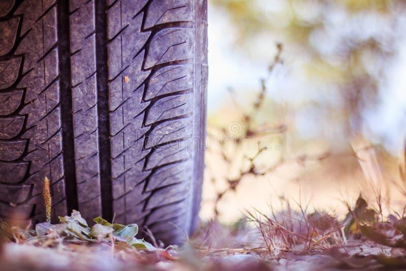 Ciérrese para arriba del neumático en el desierto, safari del coche fotos de archivo