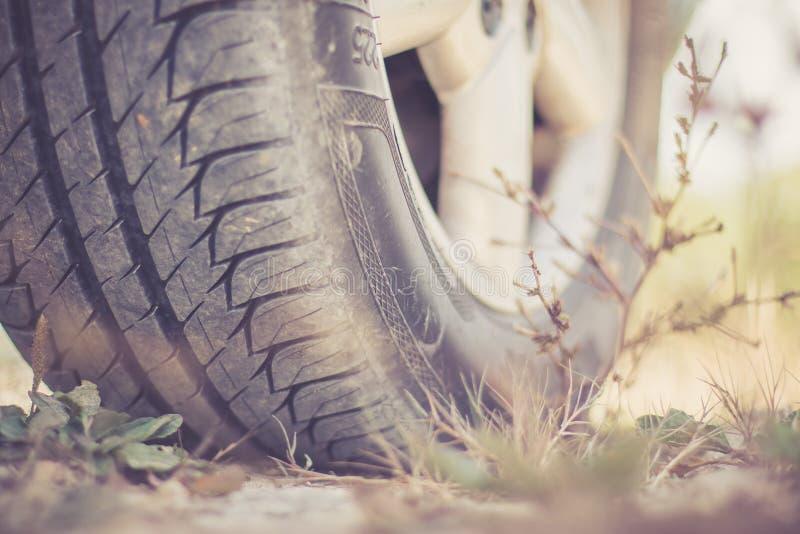 Ciérrese para arriba del neumático en el desierto, safari del coche imagen de archivo
