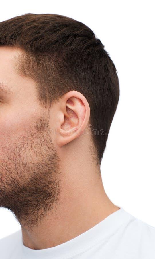 Ciérrese para arriba del oído masculino imagen de archivo