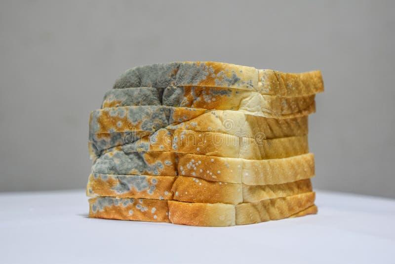 Ciérrese para arriba del pan mohoso en el fondo blanco, expiró no puede comer más porque es dañino a la salud imagenes de archivo