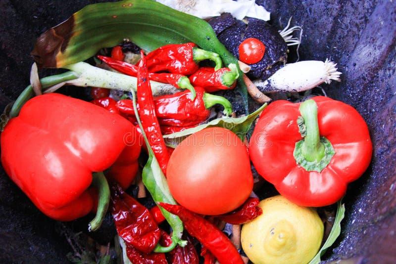 Ciérrese para arriba del paprika vegetal rojo fresco, tomate, chilis en el cubo de la basura foto de archivo libre de regalías