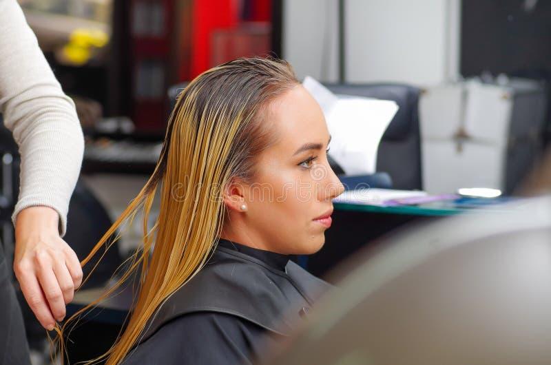 Ciérrese para arriba del pelo del ` s del cliente del corte del peluquero en salón de belleza fotos de archivo