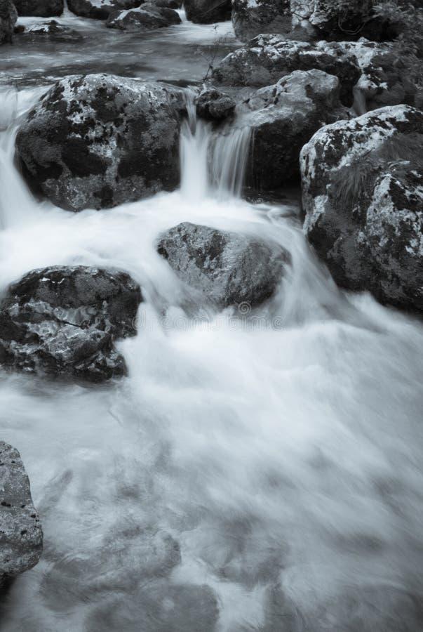 Ciérrese para arriba del río Lepenjica en el corazón del valle de Lepena, Eslovenia foto de archivo libre de regalías