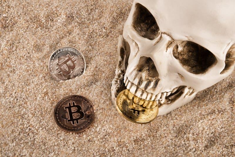 Ciérrese para arriba en bitcoin que muerde del cráneo sobre fondo de la arena imagen de archivo libre de regalías