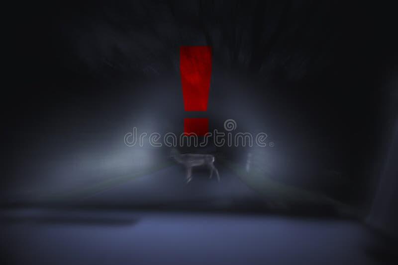 Ciérrese para arriba en ciervos en la calle en la noche, muestra del peligro, indique azul fotografía de archivo libre de regalías