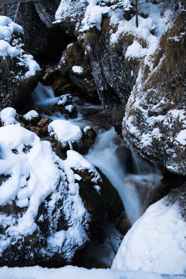 Ciérrese para arriba en el río del arroyo de la montaña que fluye entre las rocas cubiertas con nieve imagen de archivo