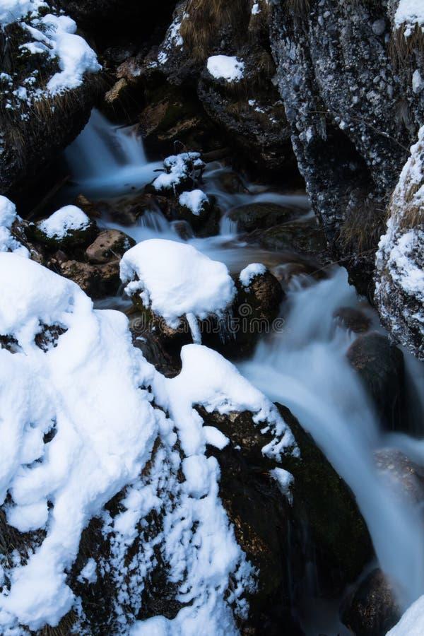 Ciérrese para arriba en el río del arroyo de la montaña que fluye entre las rocas cubiertas con nieve imágenes de archivo libres de regalías