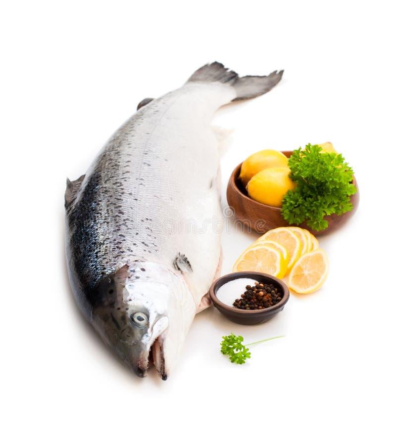 Ciérrese para arriba en un rawsalmon entero con el limón y la sal aislados en w fotografía de archivo libre de regalías