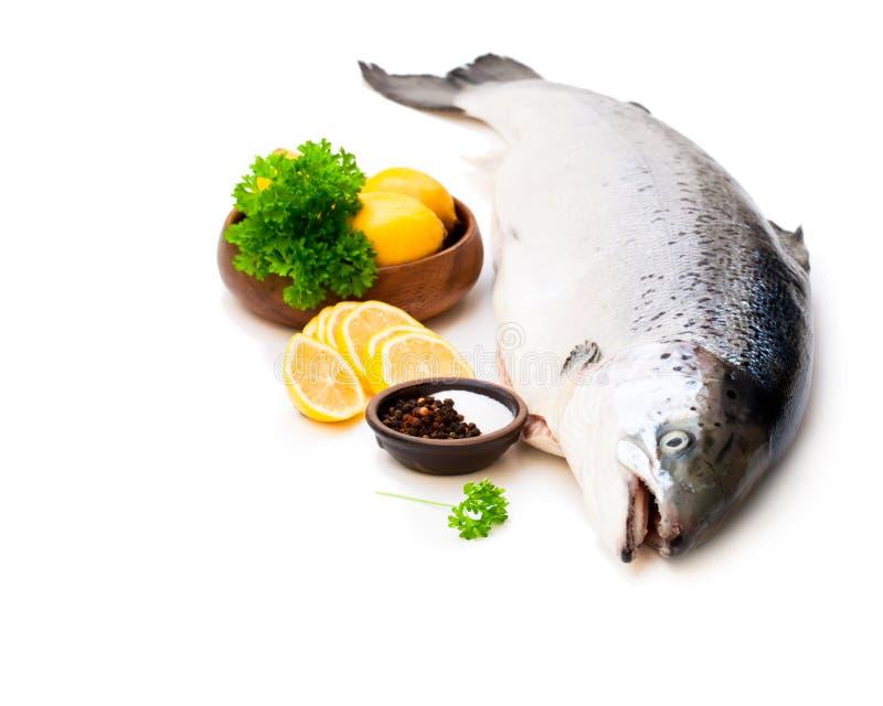 Ciérrese para arriba en un rawsalmon entero con el limón y la sal aislados en w foto de archivo libre de regalías